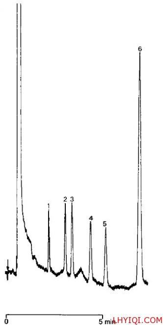 游离脂肪酸色谱图