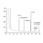 """如何提高气相色谱的分析速度,""""快速气相""""的引入"""